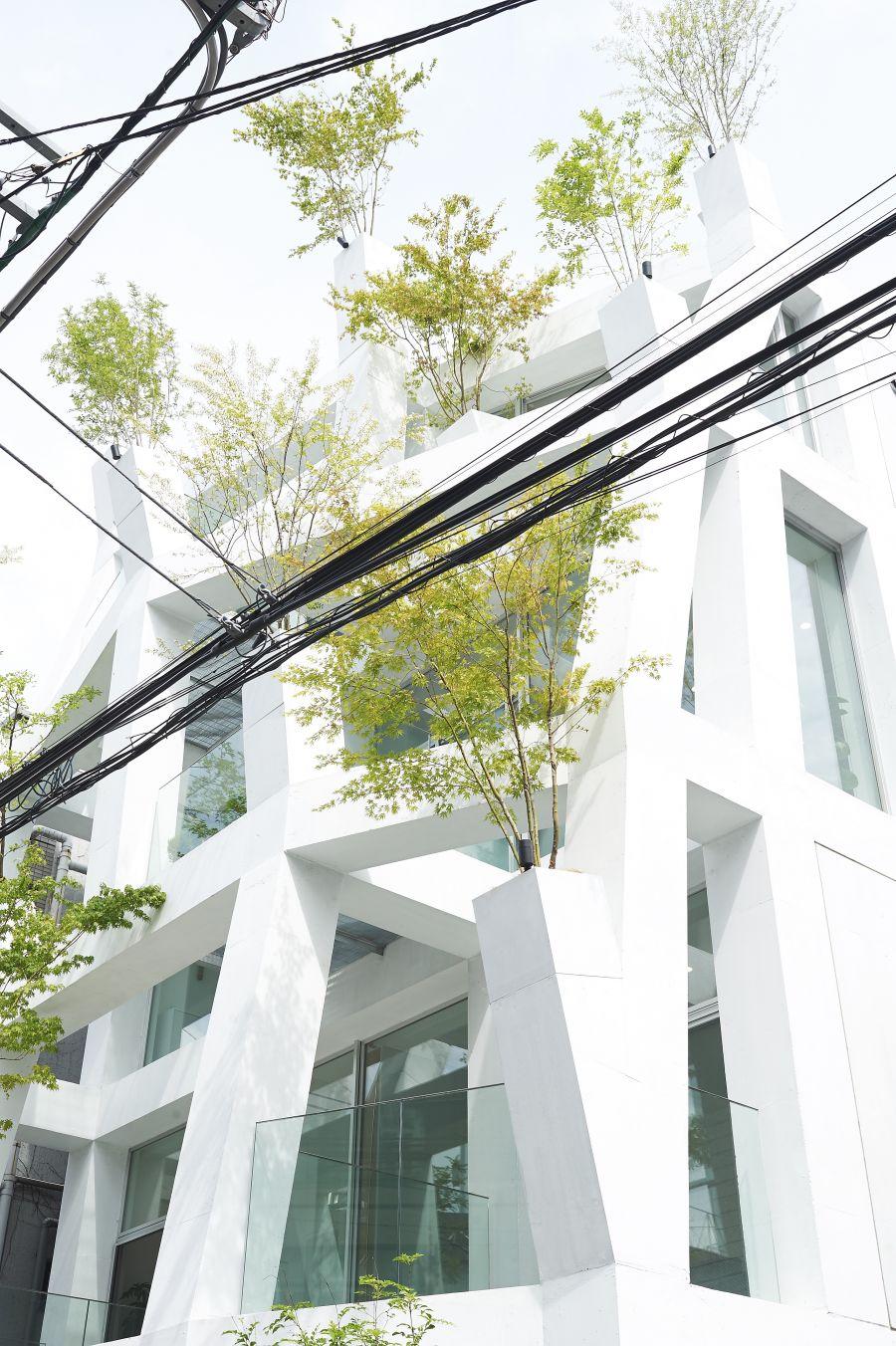 Omotesando Branches, Tokyo - crédit : V.Sadoun